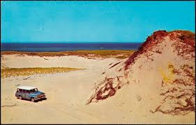 beach buggies touring the sand dunes along race point