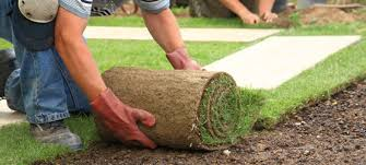 Residential Landscaping Services by Landscape Services Bluestar Construction Inc