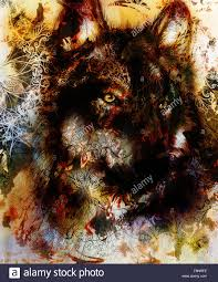wolf painting color background on paper multicolor illustration
