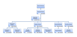 28 images of non profit organizational structure template