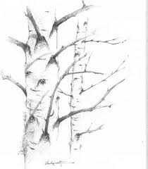 birches drawing nature joshua nava arts