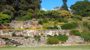 Botanic Garden Sydney Royal Botanic Garden Sydney Sydney Wheretraveler