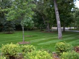 spring landscaping amazing spring landscaping has stunning x on spring landscaping on
