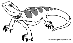 cute lizard coloring pages coloring