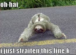Best Sloth Memes - sloth meme funny sloth images and dirty sloth memes