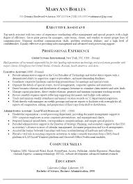 professional summary for resume exles professional summary resume exle foodcity me