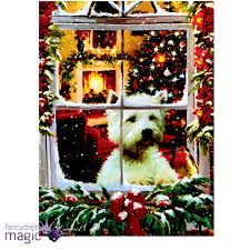 dog wall art 40 x 30cm christmas animal scene led canvas battery operated cat
