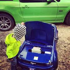 toddler mustang car 332 best mustang fan 5 0 images on mustangs ford