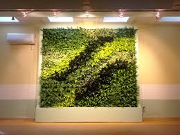 Vertical Wall Garden Plants by Indoor Green Wall With Simple Modern Ideas A Little Of Plant