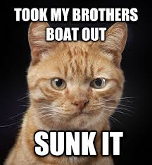 I Should Buy A Boat Meme Generator - livememe com disappointed cat