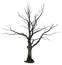 cartoon dead tree free download clip art free clip art on