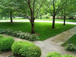 organic lawn care sponzilli landscape group