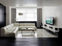 living room interior design of a living room living room