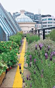 london u0027s best secret gardens gardening
