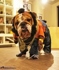 Disney Halloween Costumes Dogs 25 Bulldog Costume Ideas Bull Dog Baby