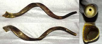 shofar mouthpiece yemenite kudu horn shofar 46 5 medium 7c trumpet mouthpiece
