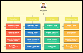 Organizational Types Of Organizational Charts For Different Scenarios Creately Blog