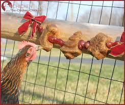 the chicken alfalfa soufflé garland chicken treats