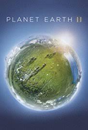 Last Poster Wins Ii New - planet earth ii tv mini series 2016 imdb