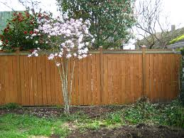 plywood fence backyard design inspiration come with grey wooden