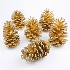 Decorating Pine Cones With Glitter Glitter Dusted Pinecones Pretty For The Living Room Tied Onto