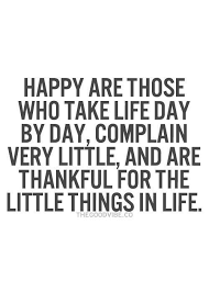 best 25 true happiness quotes ideas on live happy