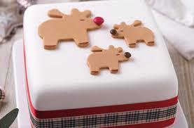 40 Christmas Cake Ideas Rudolph Christmas Cake Goodtoknow