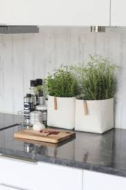 best 20 kitchen counter decorations ideas on pinterest how to decorate your kitchen with herbs 40 ideas