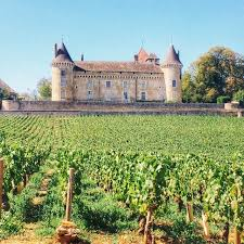 french chateau in the green vineyards of burgundy