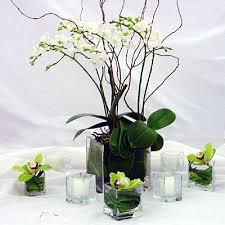 orchid centerpiece orchid centerpiece in hoboken nj beethoven s veranda