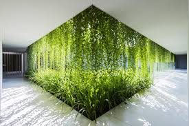 Pikes Peak Urban Gardens - 100 urban garden solutions urban gardening how to make