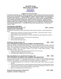 resume exles it professional experience summary in resume exles fresh summary exlesesume