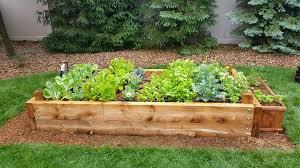 Advantage Of Raised Garden Beds - services yard2kitchen