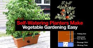how 5 self watering planters make vegetable gardening easy