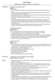 audit specialist resume samples velvet jobs