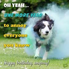cracking birthday jokes huge list of funny messages wishes