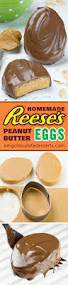 Gift Ideas For Easter 1838 Best Easter Cookies Images On Pinterest Easter Cookies