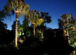 Landscape Lighting Trees Design With Subtle Moonlighting