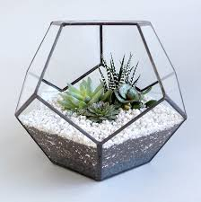 geometric glass terrariums glass terrarium terraria and terrarium