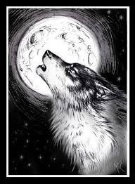 black wolf moon by mutley the cat on deviantart