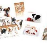 cards animal charity decore