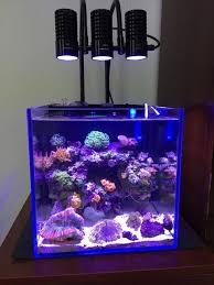 led lights for coral tanks led light marine sea tank coral sps lps grow mini nano aquarium sea