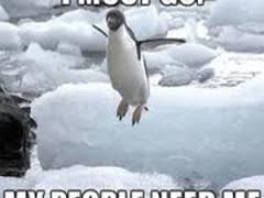 Penguin Birthday Meme - penguin weknowmemes