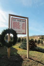 the christmas tree hunt u2014 selective potential
