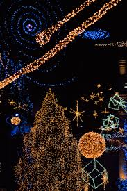 Zoo Lights Pt Defiance by Photo Contest Christmas Lights
