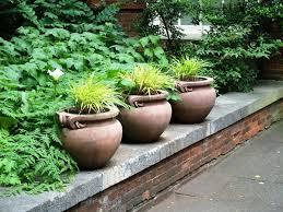 large tree planter pots iimajackrussell garages best large