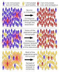 herd immunity wikipedia vaccines herd immunity pinterest