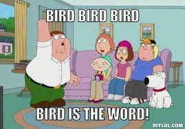 Word Meme Generator - vh peter griffin meme generator bird bird bird bird is the word c0849f