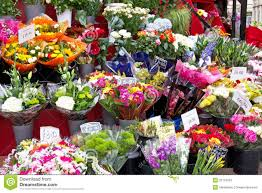 flowers shop colorful flowers in a flower shop stock image image of colorful