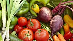 good homemade deterrent for pests of vegetable gardening dish